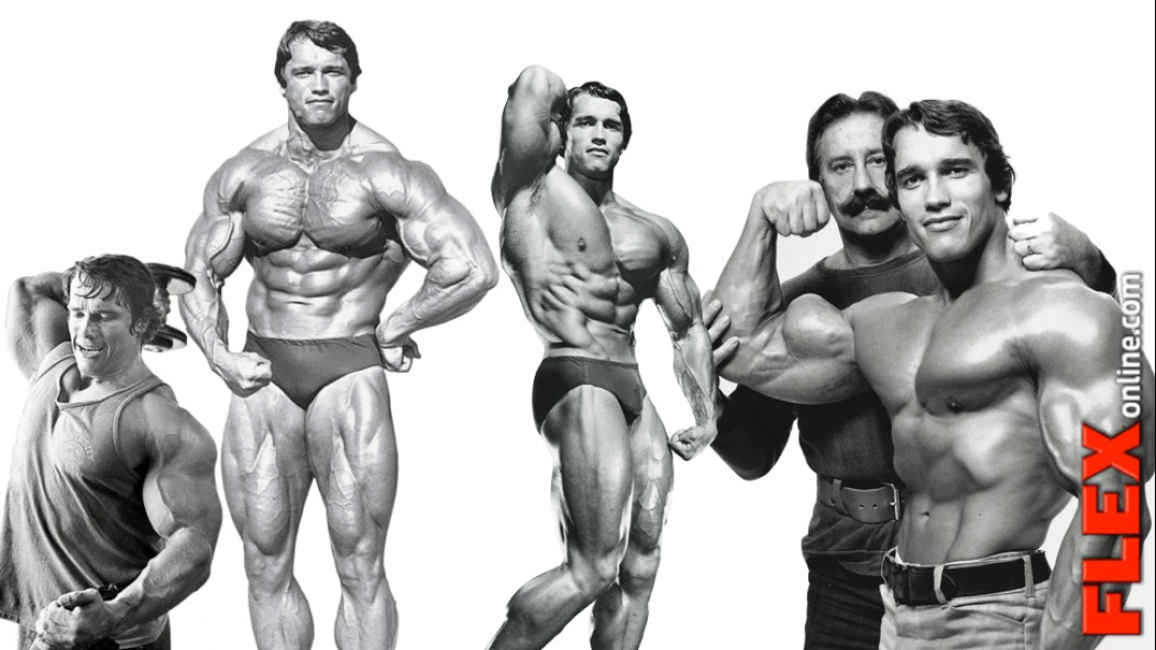 The Complete Arnold thumbnail