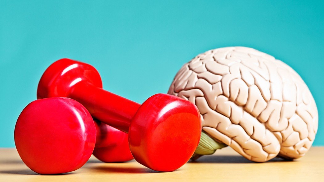 Exercise Leads to Improved Learning, According to a New Study thumbnail