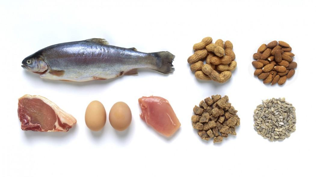 Keto Diet Protein thumbnail
