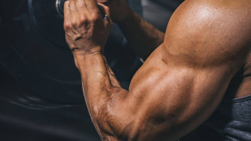 5 Sleeve-Busting Arm Workouts thumbnail