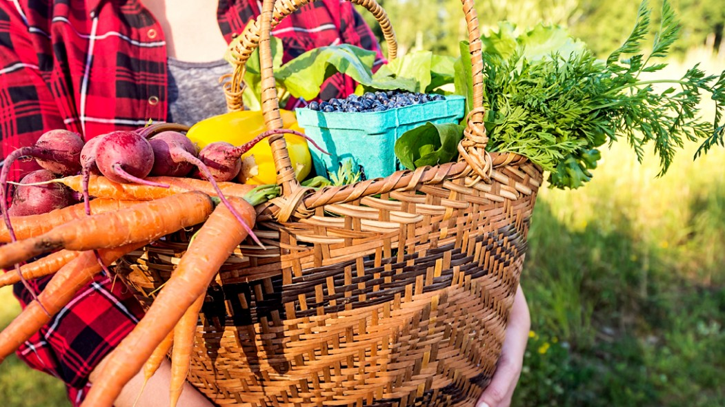 Woman-Holding-Vegetable-Basket thumbnail