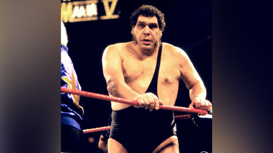 Wrestler André René Roussimoff best known as Andre The Giant in the ring at Wrestlemania V thumbnail