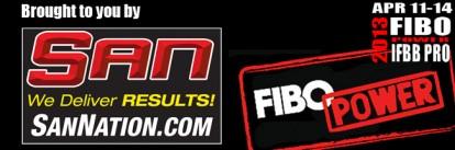 FIBO Power 2013