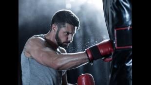 Boxing Heavy Bag thumbnail