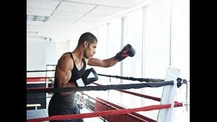 Boxer thumbnail