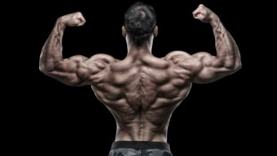 bodybuilder back pose thumbnail