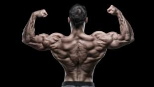 bodybuilder back pose thumbnail