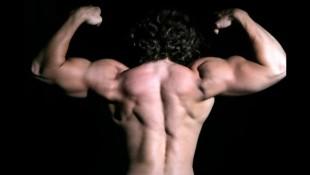 Muscular Back thumbnail