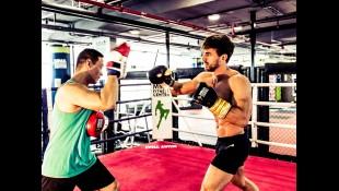MMA Fighter thumbnail