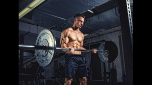 The Upper-Body Muscle Workout Program thumbnail