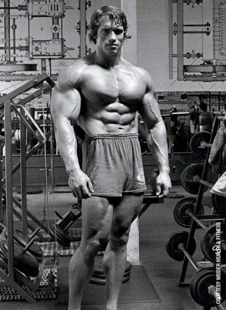9 Little-Known Facts About Arnold Schwarzenegger | Muscle ...