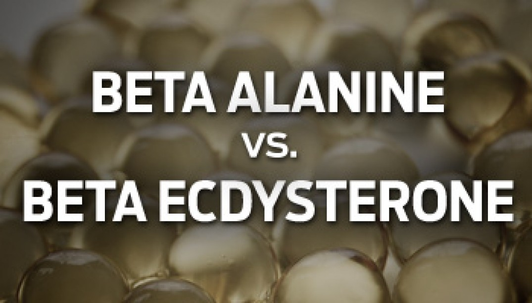 Beta Alanine vs. Beta Ecdysterone