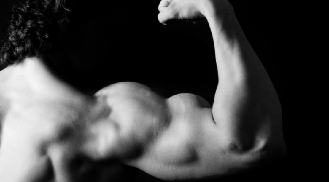 More Arm Muscle