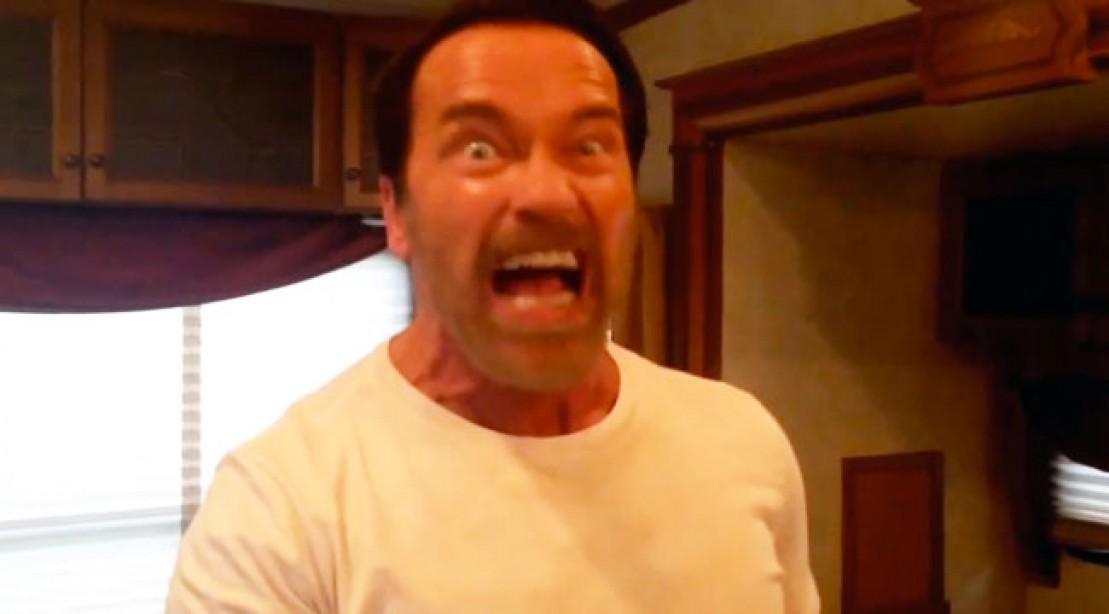 The Arnold Schwarzenegger Reddityoutube Quotable Extravaganza