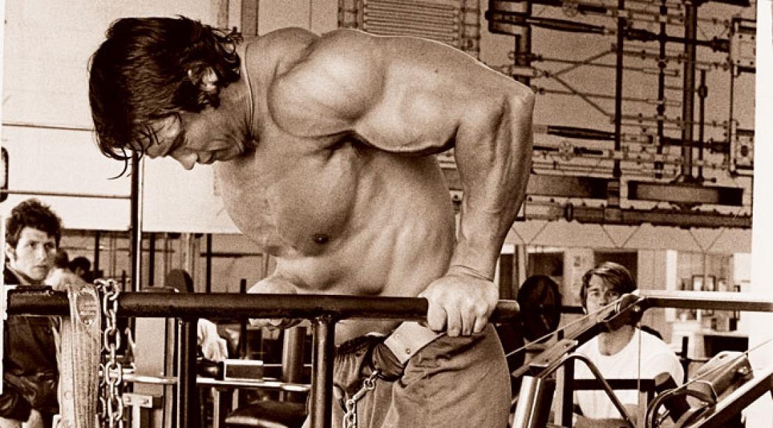 Get Arnold Schwarzenegger's Chest