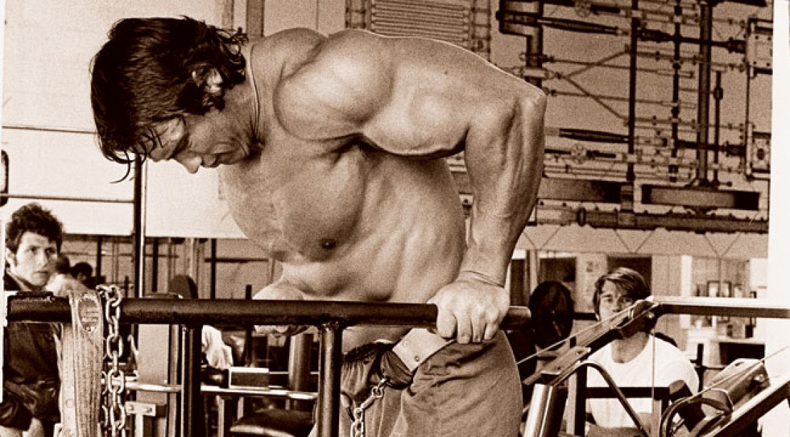 Get Arnold Schwarzeneggers Chest