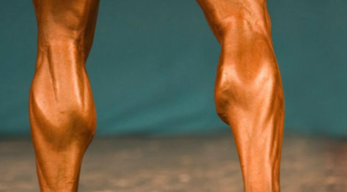 Calves Workout Gym Fix The Leg Press Calf Raise Muscle Fitness
