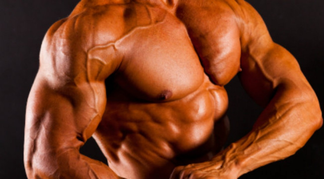 Upper Body Training: Build Bigger Pecs and Arms Now. | Muscle & Fitness