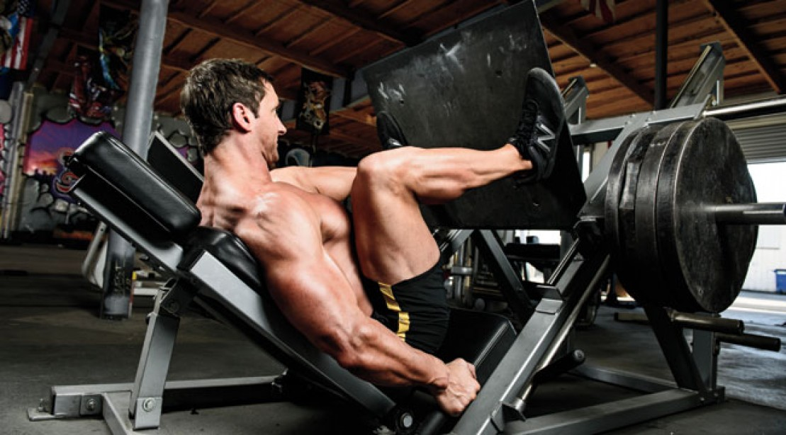 2013 Fat Burners Supplement Guide: Products
