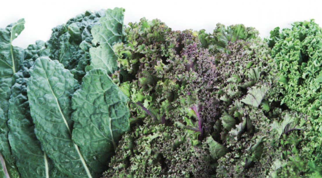 Muscle Fuel: Hail Kale