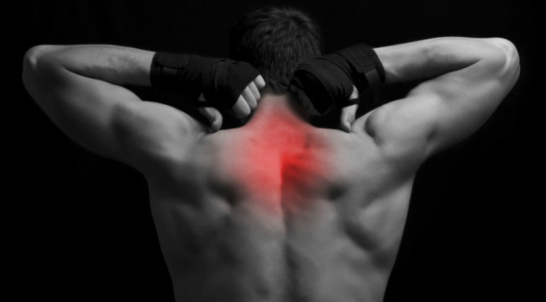 Muscle Building Advice Basics Training Self Myofascial Release