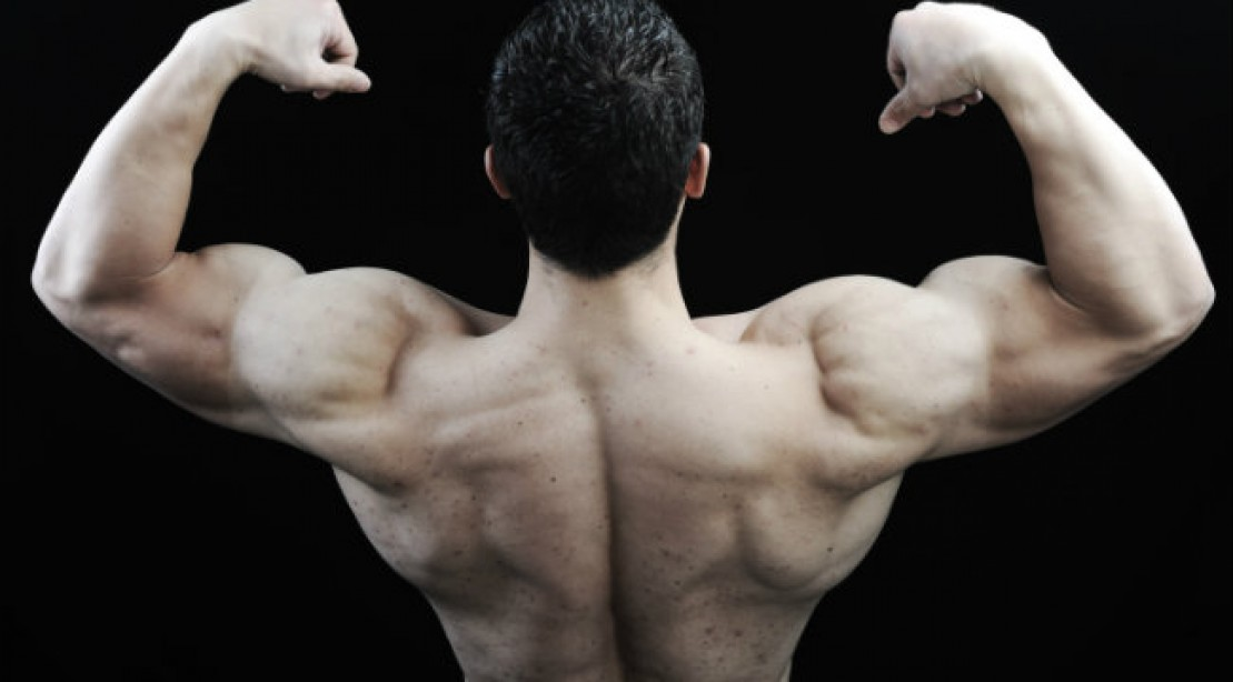 top 3 exercises for a stronger back muscle fitness