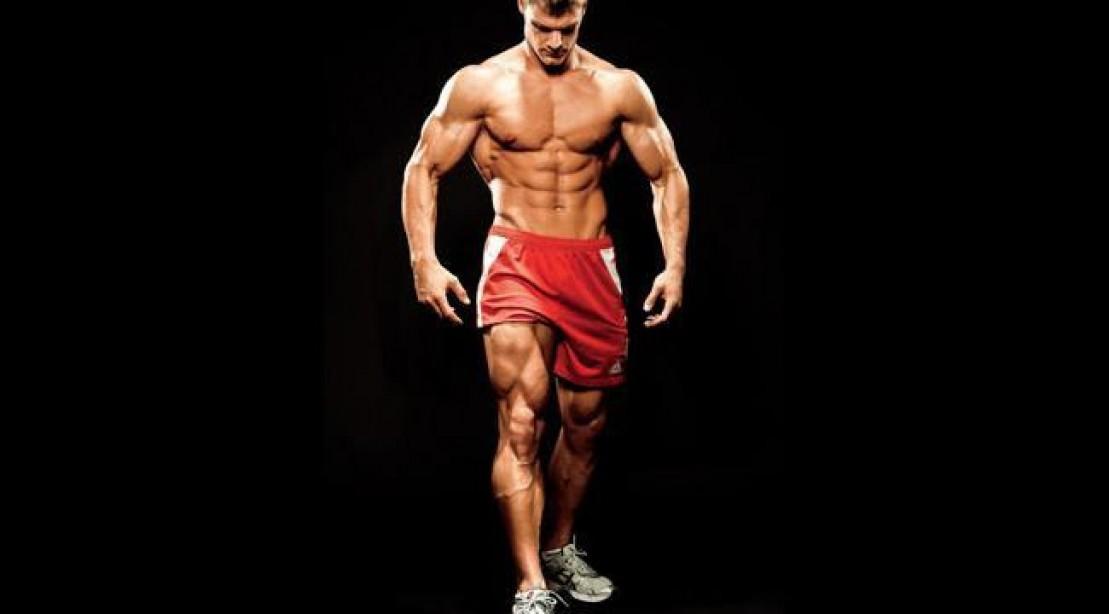 The Best Leg Building Workout Program Muscle Fitness