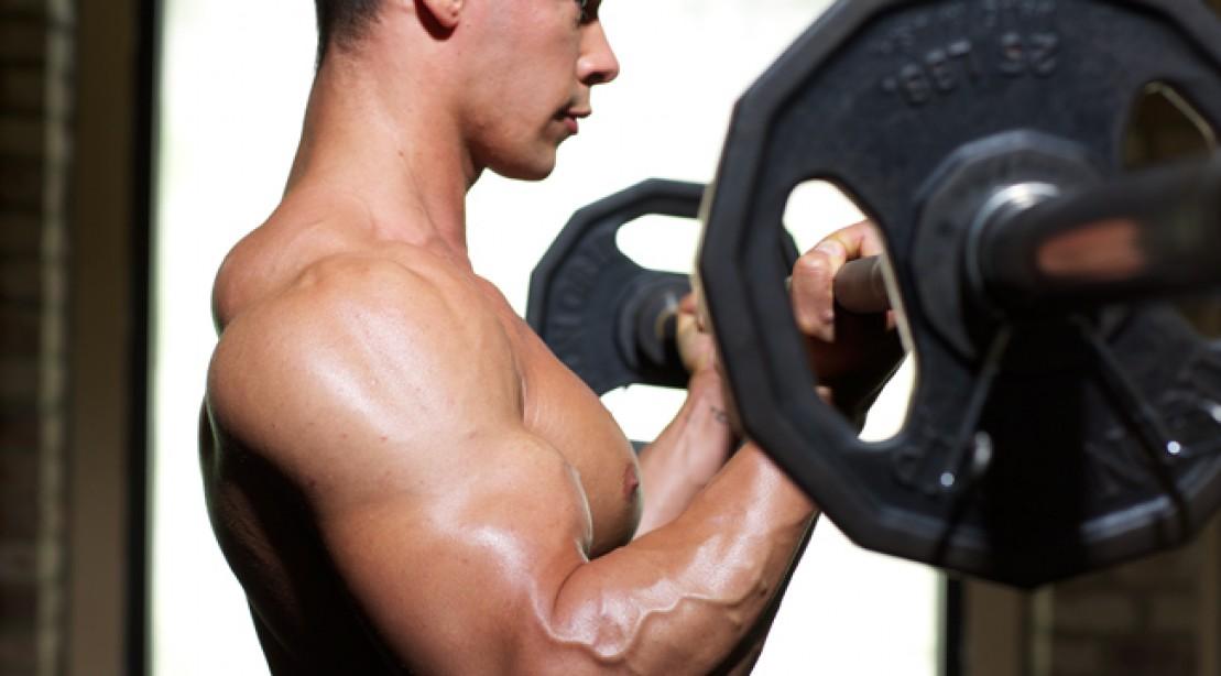 Expert Advice: Bigger Arms
