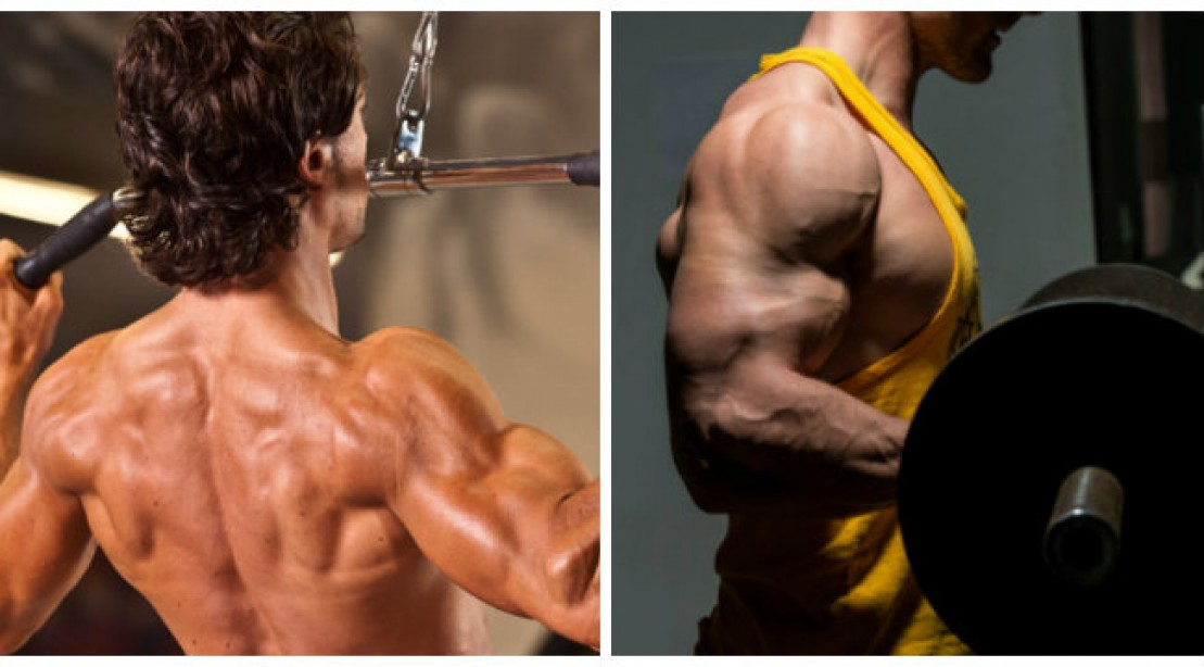 Back and Biceps Blasting Workout