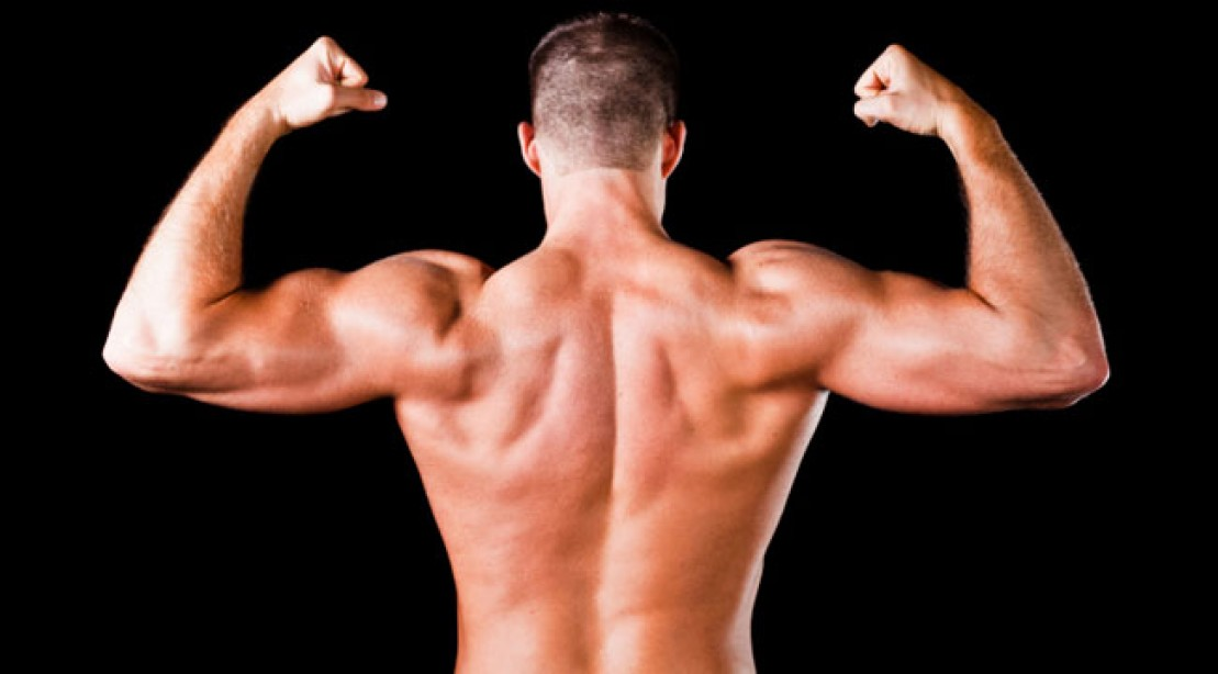 T-Bar Row for a Bigger Back
