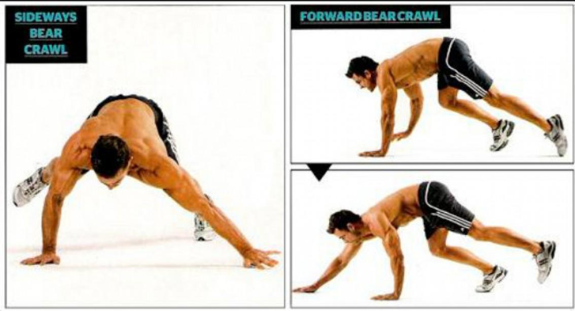 Upper Body Circuit: Bear Crawl for Bigger Gains