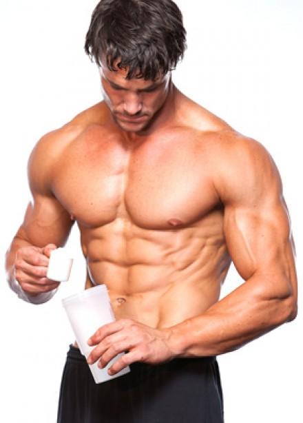 Muscle & Fitness Store: Fat Burner Primer
