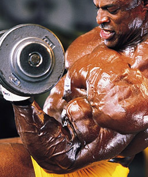 Ask Mr. Olympia: The Total-Body Dumbbell Workout