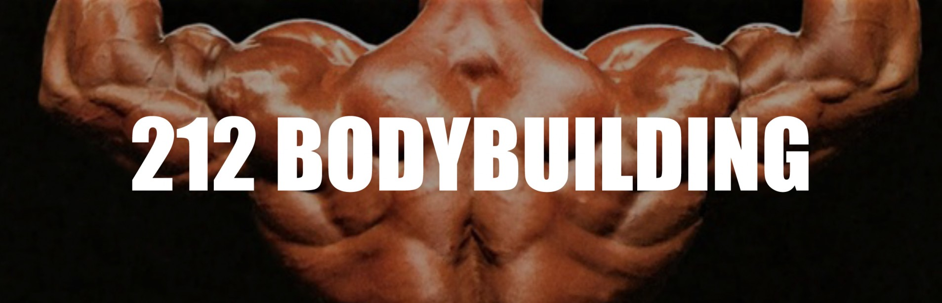 2015 IFBB Chicago Pro 212 Bodybuilding Call Out Report