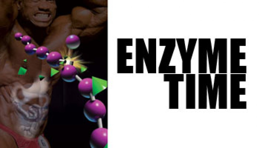 ENZYME TIME