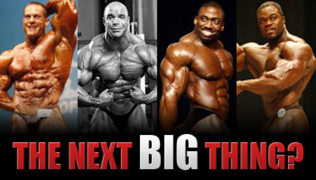 VOTE: THE NEXT BIG THING?