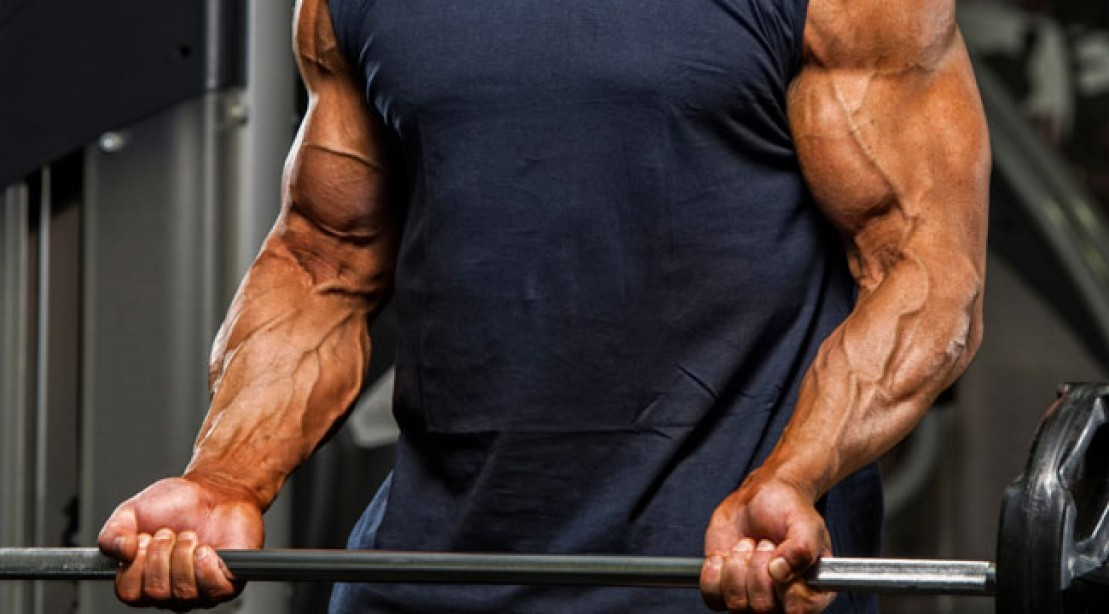Pump It Up with Nitric Oxide