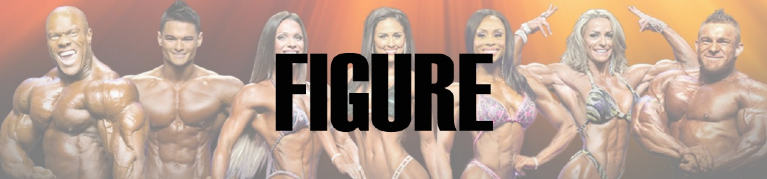 2016 IFBB Toronto Pro: Figure Call Out Report