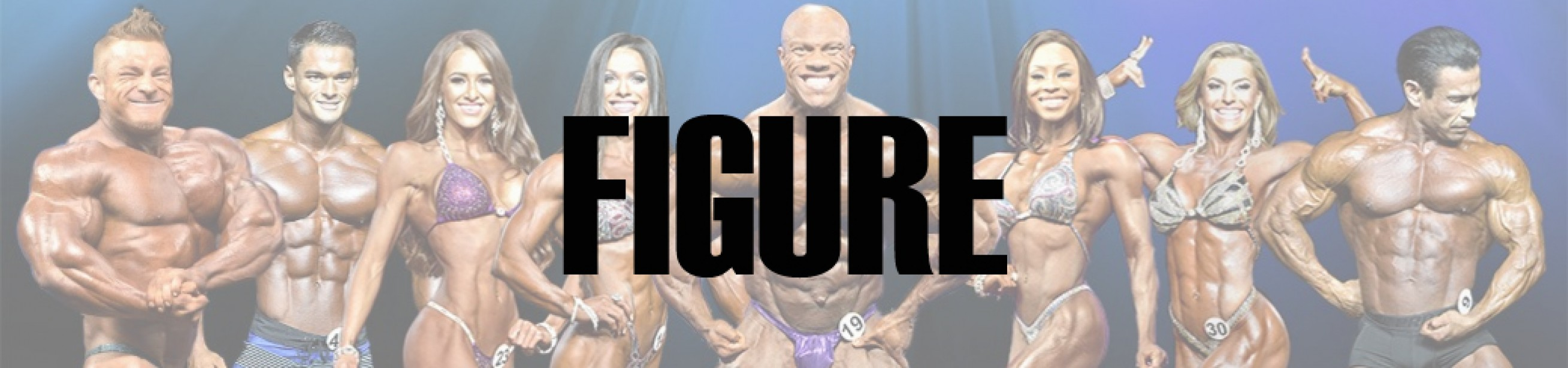 2017 Arnold Classic Figure Call Out Report