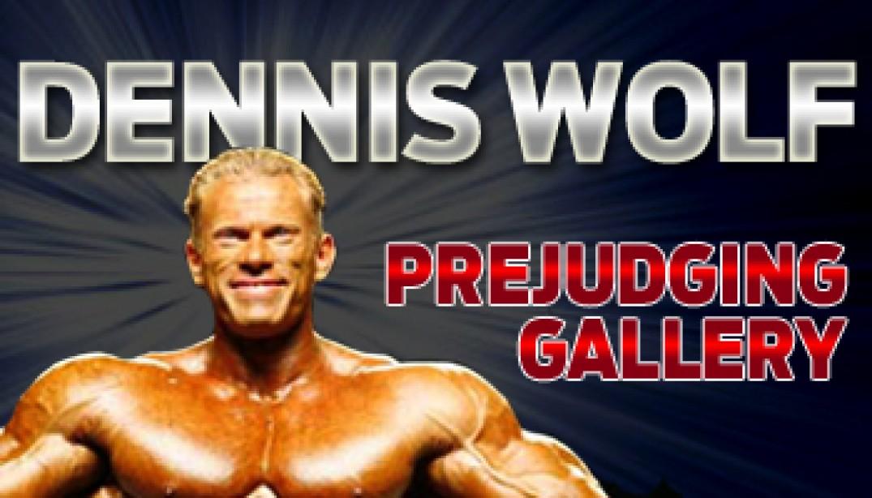 DENNIS WOLF PREJUDGING GALLERY