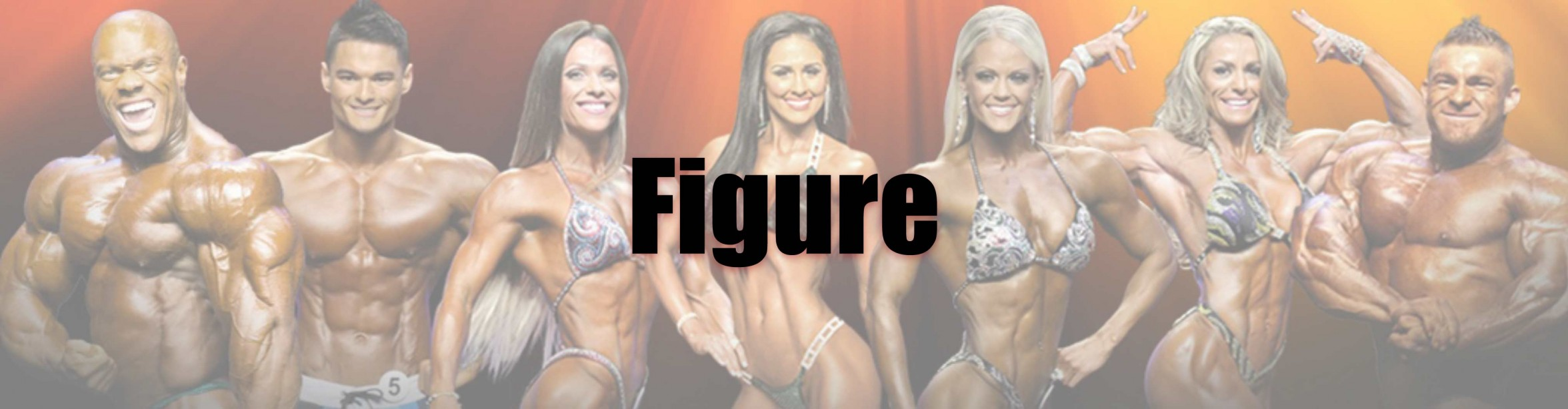 2015 Figure Olympia Call Out Report