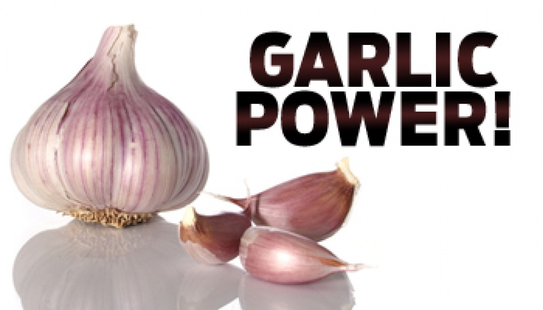 GARLIC POWER!