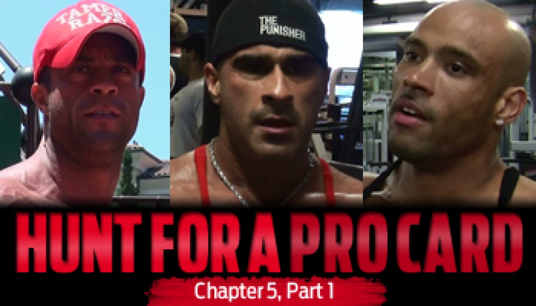 HUNT FOR A PRO CARD: Chapter 5 - Part 1