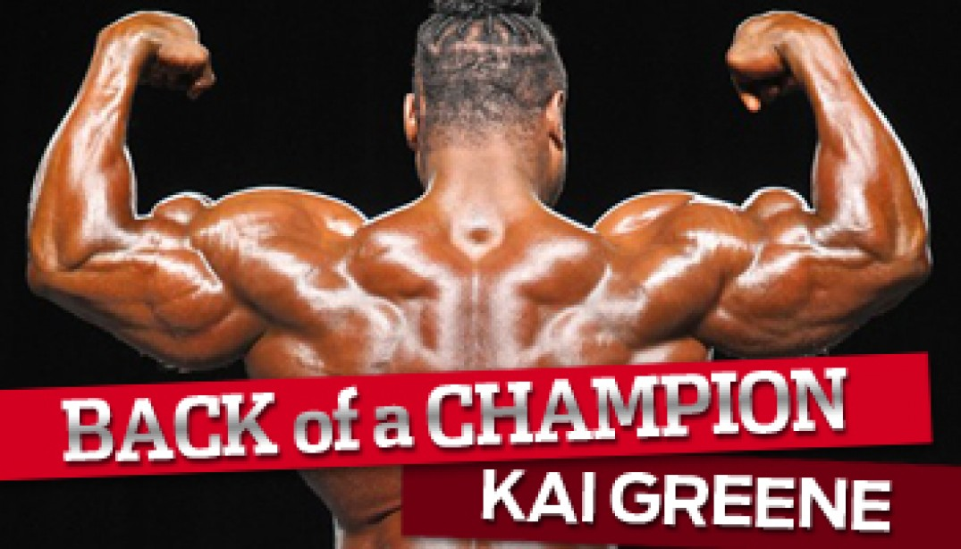 BACK OF A CHAMPION