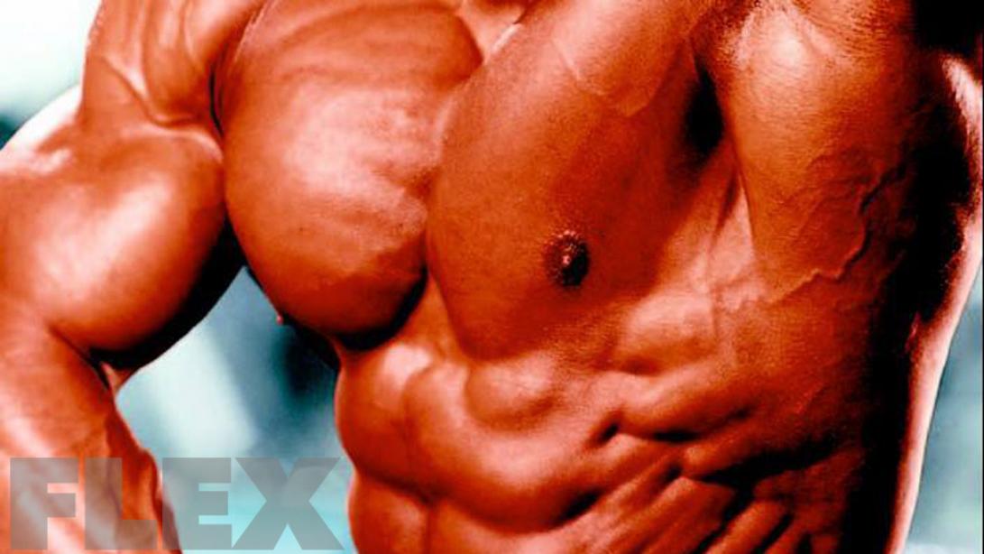 Bodybuilding Essentials