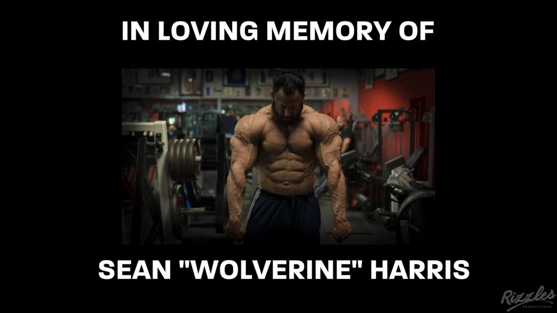 In Memoriam: Sean Harris