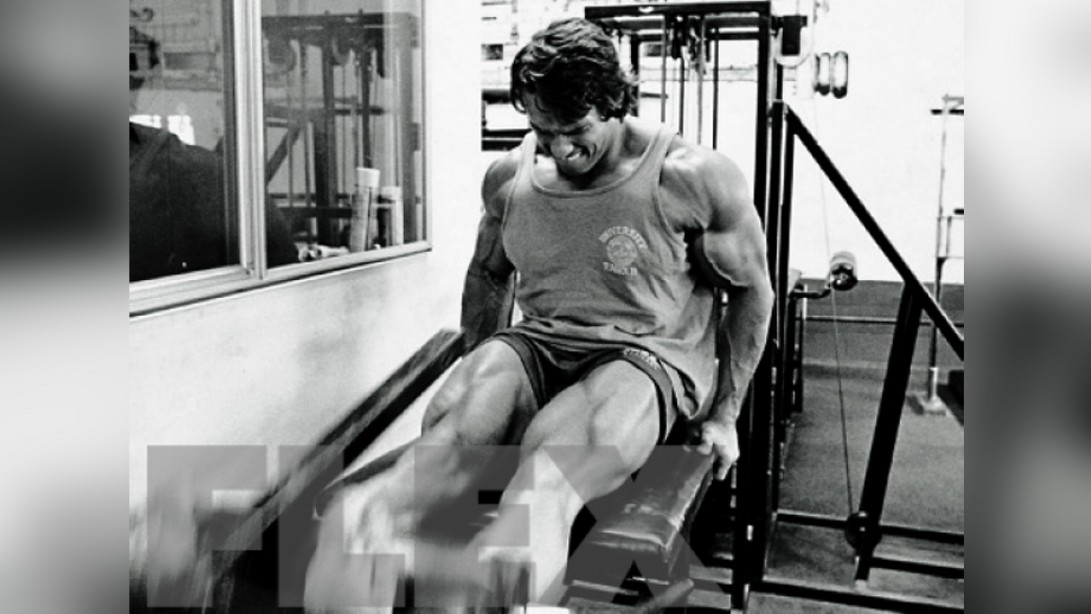 The Complete Arnold: Legs