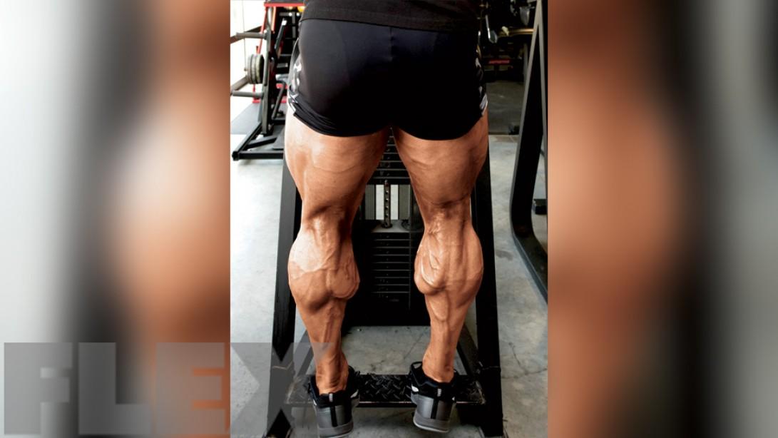 ronnie coleman calves workout