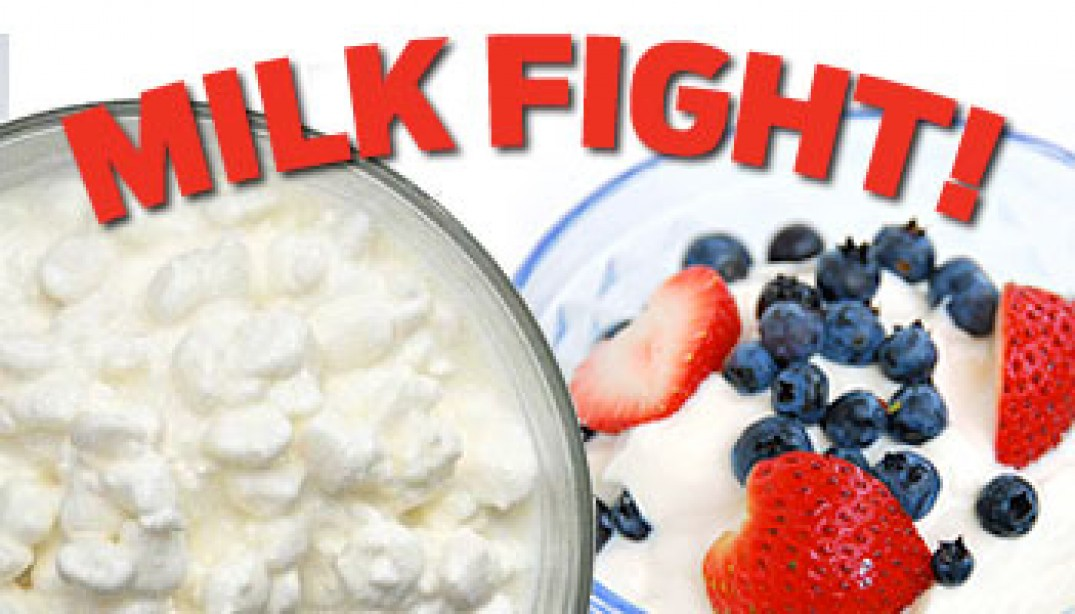 SHOWDOWN: YOGURT vs. COTTAGE CHEESE
