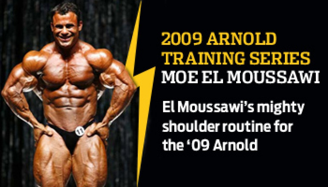 2009 ARNOLD TRAINING SERIES: MOE EL MOUSSAWI